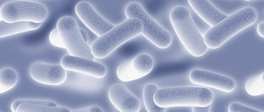 Fight The Top Germ Hotspots